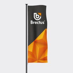 Brectus flagg stående