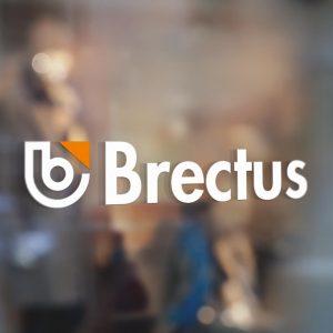 Brectus Folia okienna, dekorowanie okien 3
